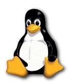 Hébergeur Web Linux